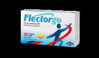 flectorgo